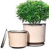 FANGZHIDI Ceramic Plant Pots