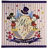 ナカバヤシ ディズニーキャラクター Lサイズ フヤスアルバム ビス式 白台紙10枚 A-LF-1001 ミッキー&ミニー