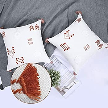 YINFUNG Boho Pillow Covers 18x18 Set of 2 Burnt Orange Tassel Modern Farmhouse Cushion Cover Textured Moroccan Decorative Couch Pillow Cover Canvas Cotton Living Room