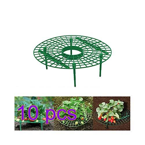 Yissma Erdbeerstützen Pflanzen Gestell Pflanze,Gartenpflanze Wiederverwendbar Gestell Pflanze Kletterpflanze Erdbeer Unterstützung für Erdbeerpflanzen