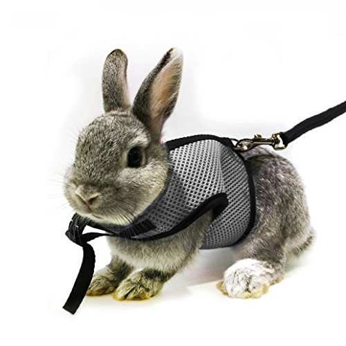 ASOCEA Adjustable Soft Harness with Stretchy Leash for Bunny Cat (Gray)