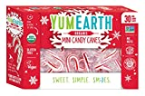 YumEarth Organic Holiday Mini Candy Canes, 30 Count