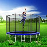 CalmMax Trampoline 12FT Jumping-Bed with Enclosure Net, Recreational Trampolines Jump-Dunk for Kids Adult Bounce Outdoor Trampoline - Ship from USA