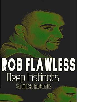 Deep Insticts