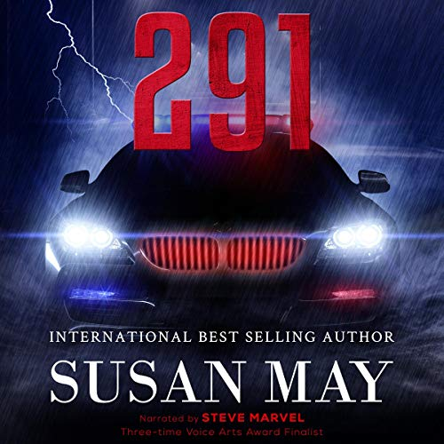 291 Audiobook By Susan May cover art
