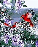 N/W Lienzo DIY Pintura Al Óleo Manualidades para Pintar Pintura por Numeros Adultos Niños - Dos Pájaros Rojos Y Flores Moradas. 40X50Cm