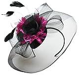 Feather Flower Fascinator Hat Veil Net Headband Clip Ascot Derby Races Wedding (Black and Fuchsia Hot Pink)