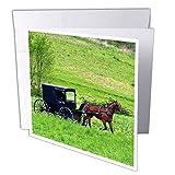 3dRose gc_93371_1 - Tarjeta de felicitación (6 unidades, 15 x 15 cm), diseño de granja de Amish con silla de paseo cerca de Berlín, Ohio – Us36 Dfr0018 – David R Frazier'