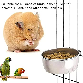 Lot de 3 mangeoires à oiseaux en acier inoxydable avec support de serrage pour perruches, inséparables, conures, cacatoès