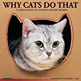 Why Cats Do That 2021 Wall Calendar