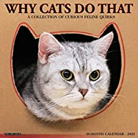 Why Cats Do That 2021 Calendar: A Collection of Curious Feline Quirks