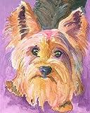 DIY Pintura al óleo por números Kits Yorkshire terrier perro acuarela Pintura digital Lienzo Regalo para adultos Niños Cumpleaños Boda nuevo alojamiento decoraciones