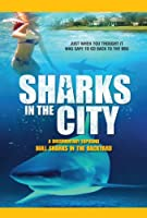 Sharks in the City [DVD] [Import]