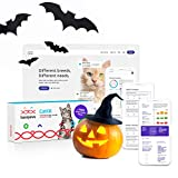 Basepaws Cat DNA Test Kit | Feline Breed Groups, Diseases and Traits | Cats Testing Includes 17+ Genetic Diseases | Just Swab & Send DNA Sample | Now Comes with Dental Report - Get it in 4-6 Weeks