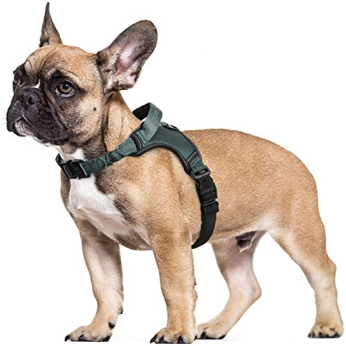 rabbitgoo Dog Harness, Adjustable Dog Walking Harness with Handle and Shock-Absorbing Bungee Straps, Reflective Dog Vest Harness No Choke, Halter Harness with Padded Strap for Large Dogs, L