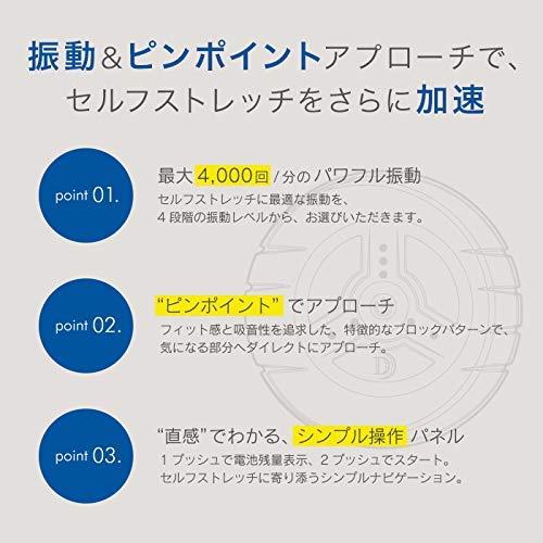 ドリームファクトリーDOCTORAIR(ドクターエア)『3Dコンディショニングボール(CB-01)』