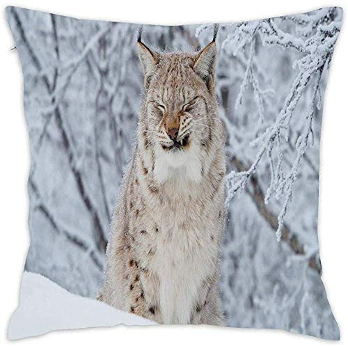 DayToy Quadratische einzigartige Kissenbezug Throw Kissenbezug Slipover Kissenbezug für Home Couch Stuhl Rücksitz (Wild Cat Lynx Winter Schnee)