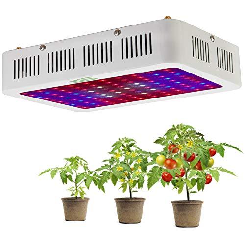 JS 1000W LED Pflanzenlampe Vollspektrum LED Grow Light Pflanzenlicht UR IR Rot&Blau Wachstumslampe Pflanzenleuchte für Zimmerpflanzen,Gemüse,Blumen und Gewächshaus Pflanze,EU Plug(10W LEDs) MEHRWEG…