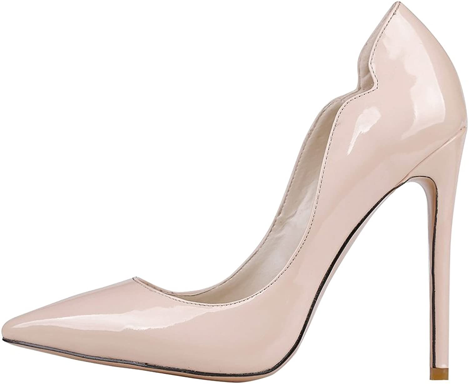 Calaier Womens Cafire Pointed Toe 11CM Stiletto Slip on Pumps shoes