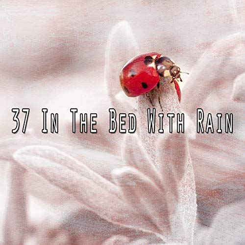 37 In the Bed with Rain