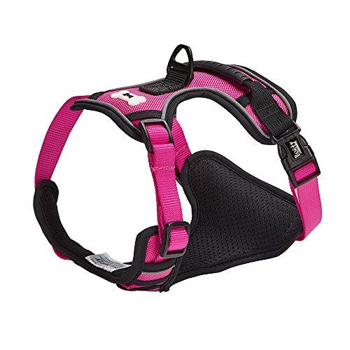 Bunty - Arnés Ajustable para Perro o Cachorro de Tela Suave y Acolchado cómodo para Exteriores, Color Rosa - Mediano