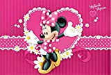 Photo Background Pink Minnie MouseBirthday Backdrop for Princess Girls 7x5ft Hot Pink Stripes White Flowers Baby Shower Custom Backdrop with Name