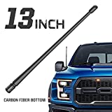 Rydonair Antenna Compatible with Ford F150 2009-2020 | 13 inches Flexible Rubber Antenna Replacement | Designed for Optimized FM/AM Reception
