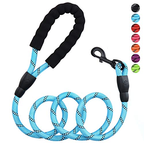 Petmegoo 5ft 1/2in Strong Blue Dog Leash for Medium Dogs & Large Dogs - Highly Reflective Puppy Leash with Soft Padded Anti-Slip Handle - Heavy Duty Rope Leash