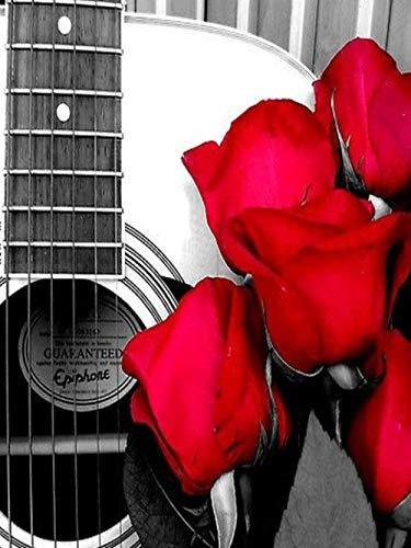 Diy 5D Diamond Pintura Por Número Kit,Mesa De Centro De Calle Gris Escena De Guitarra De Rosa Roja Taladro Completo Bordado De Diamantes Pintura Pegada Artesanía Para La Decoración