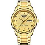Guanqin, orologio da polso analogico da uomo, a carica automatica, automatico, impermeabile, con calendario luminoso, cinturino in acciaio inox, colore oro