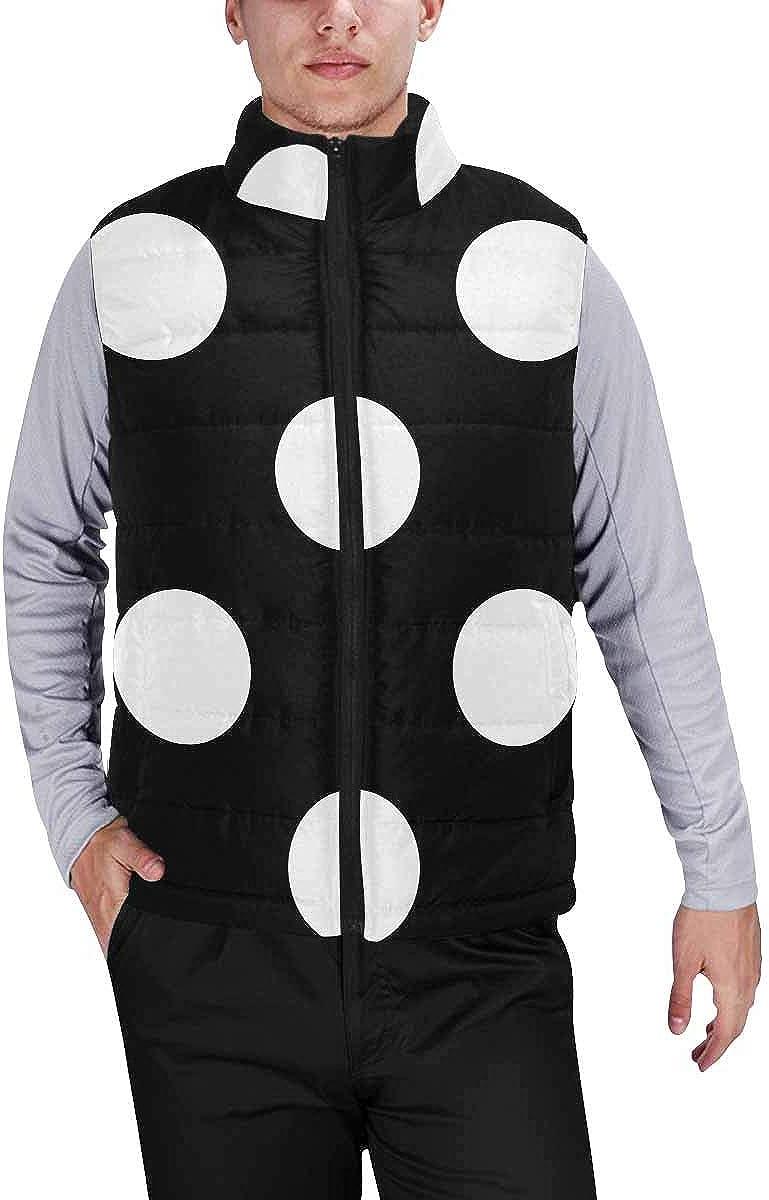 InterestPrint Men's Outdoor Casual Stand Collar Padded Vest Coats Abstract Petals Flower Dahlia