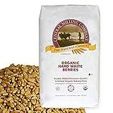 100% Organic Hard White Spring Wheat Berries - 25 lbs