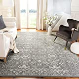 Safavieh Evoke Collection EVK270S Shabby Chic Distressed Non-Shedding Stain Resistant Living Room Bedroom Area Rug, 9' x 12', Grey / Ivory