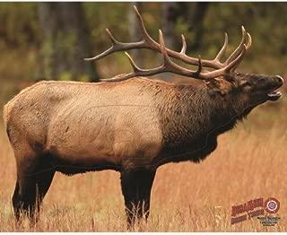 Dura Mesh Archery Elk 1 Target, Brown, 25