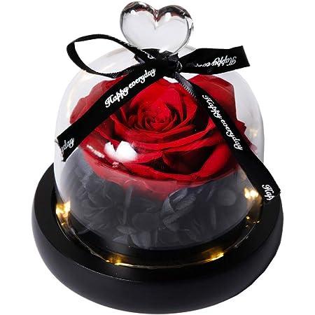 Paysage rose Rouge Veilleuse DIY Fleur /éternelle un anniversaire et un anniversaire un mariage Yiize Couvercle en verre LED rose No/ël Cadeau unique pour la Saint-Valentin