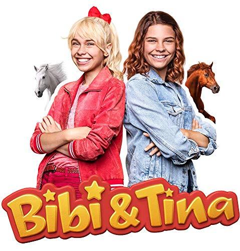 Wandtattoo Bibi und Tina - in verschiedenen Motiven und Größen erhältlich - Made in Germany - TV-Serie Pferde Amadeus Sabrina Martinshof Mädchen Kinderzimmer (47cm x 47cm, Mit Amadeus und Sabrina)