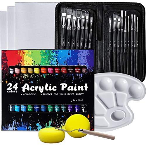 VIKEWE Acrylic Paint Set, 48 Piece Professional Painting Set, Includes 24 Acrylic Paints, 16 Pcs Paint Brushes with Case, 3pcs Canvas, Paint Knife, Sponge, Palette for Oil, Artists, Students and Kids