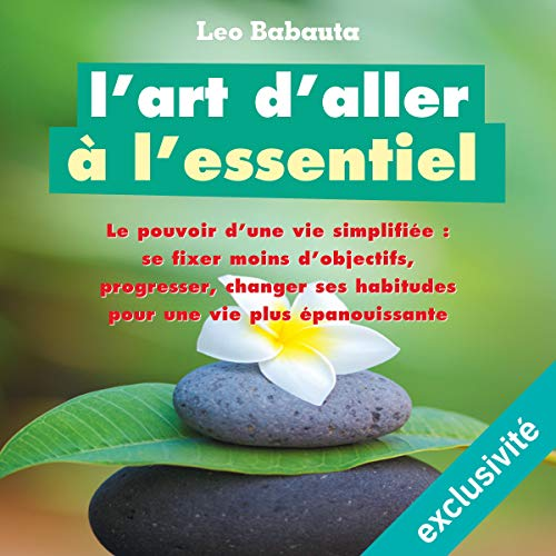 L'art d'aller à l'essentiel audiobook cover art