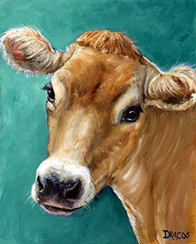 Jersey Cow Art Print, honey colored Jersey cow on teal background, dairy cow, Print of Original Painting by Dottie Dracos