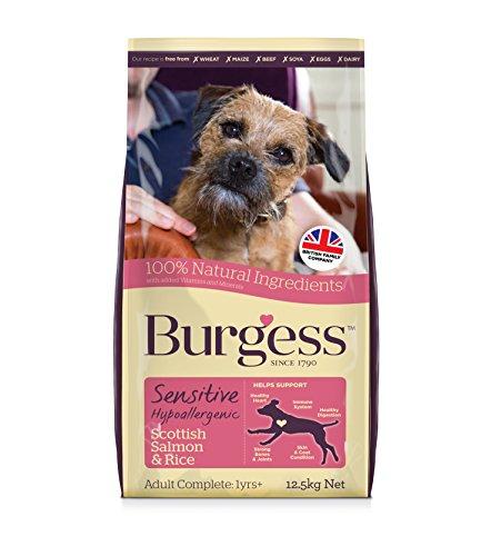 Burgess Sensitive Nourriture pour Chien Adulte, Agneau Britannique et Riz, 12,5 kg