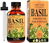 Basil Essential Oil (1 oz), Premium Therapeutic Grade, 100% Pure and Natural, Perfect for Aromatherapy, Relaxation, Improved Mood and Much More by Mary Tylor Naturals