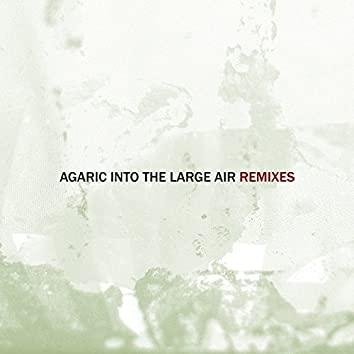 Into the Large Air, Pt. 1 (Remixes)