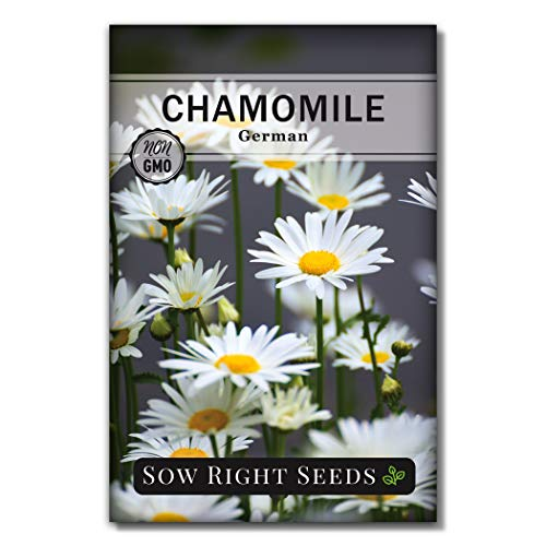 Sow Right Seeds - German Chamomile Seeds for Planting - Non-GMO Heirloom Seeds;...