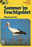 Sommer im Feuchtgebiet. Pflanzen und Tiere (Drei-Punkt-Buch: 1006)