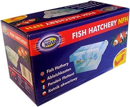Aqua Nova 2 en 1 Aquarium pour poissons d'élevage, petite Fry en Tanks, isolement des malades Poisson