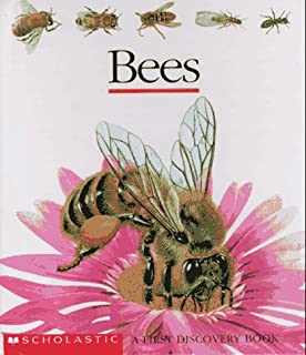 Bees (First Discovery)