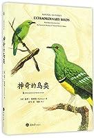 神奇的鸟类