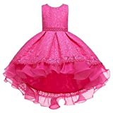 Flower Princess Girls Dress for Kids Wedding Bridesmaid First Communion Birthday Party Holiday Formal Prom Dance Evening Ball Gown Embroidery Lace Long Tutu Dresses Hot Pink 7-8 Years