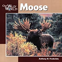 Best world of moose Reviews