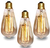 Groeien 40W Dimmable Industrial Pendant Filament Light Bulb with Vintage Antique Design